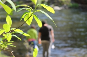 Water field study at Outdoor School